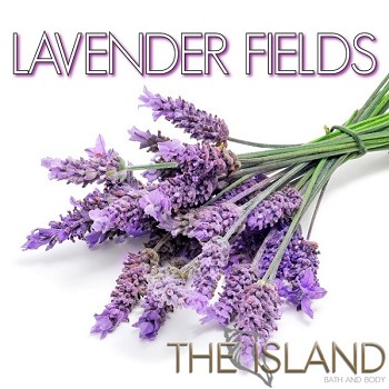 Shower Bomb: Lavender Fields